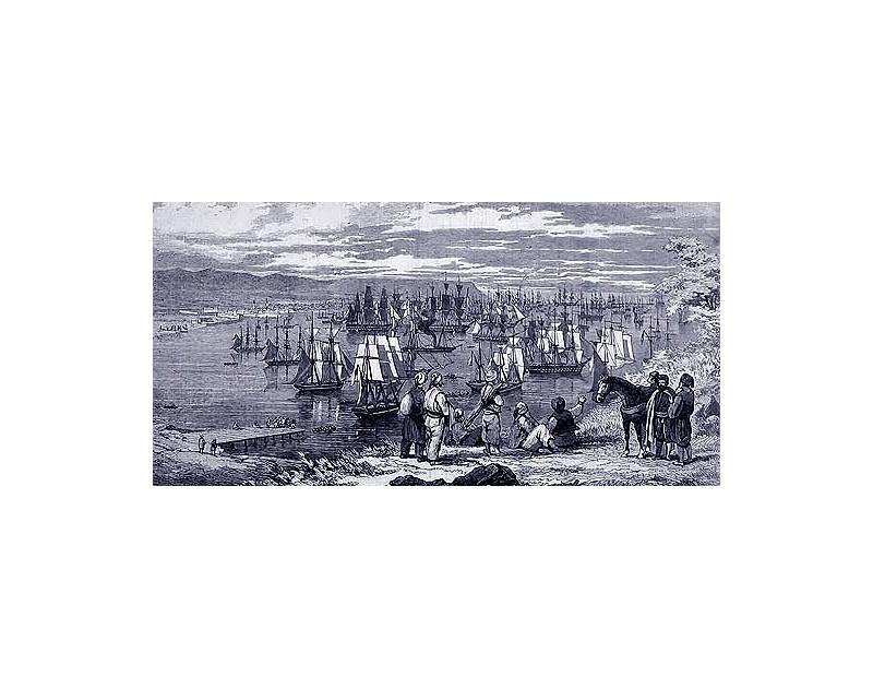История - Варна - залив