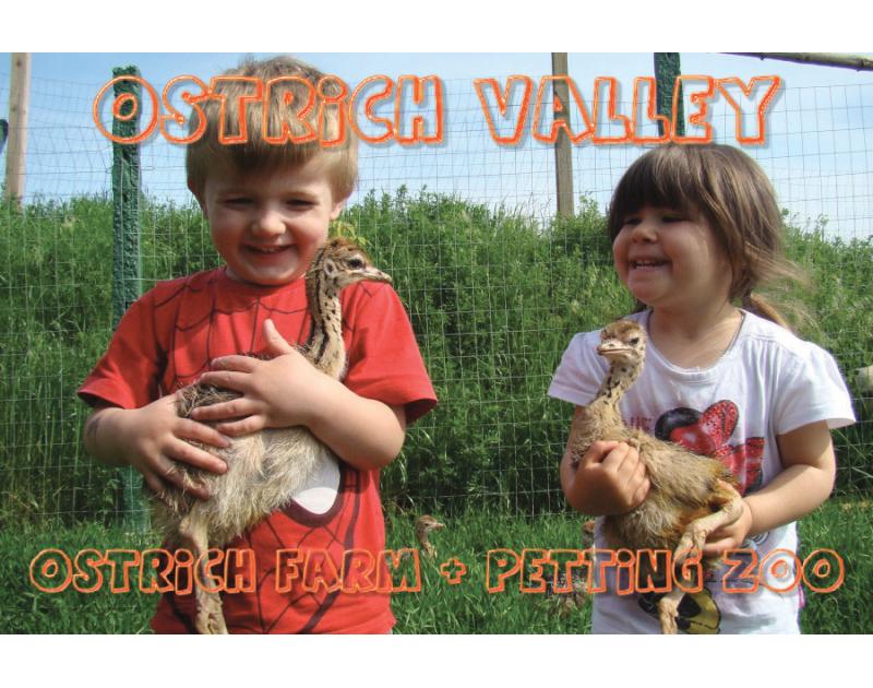 Долината на щраусите - ферма за щрауси и зоологическа градина