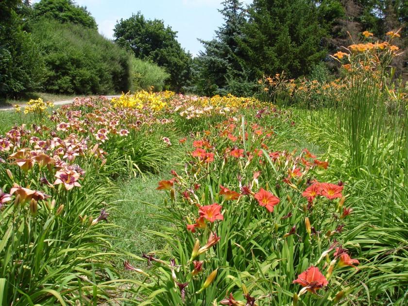 The University Botanical Garden U2013 Varna