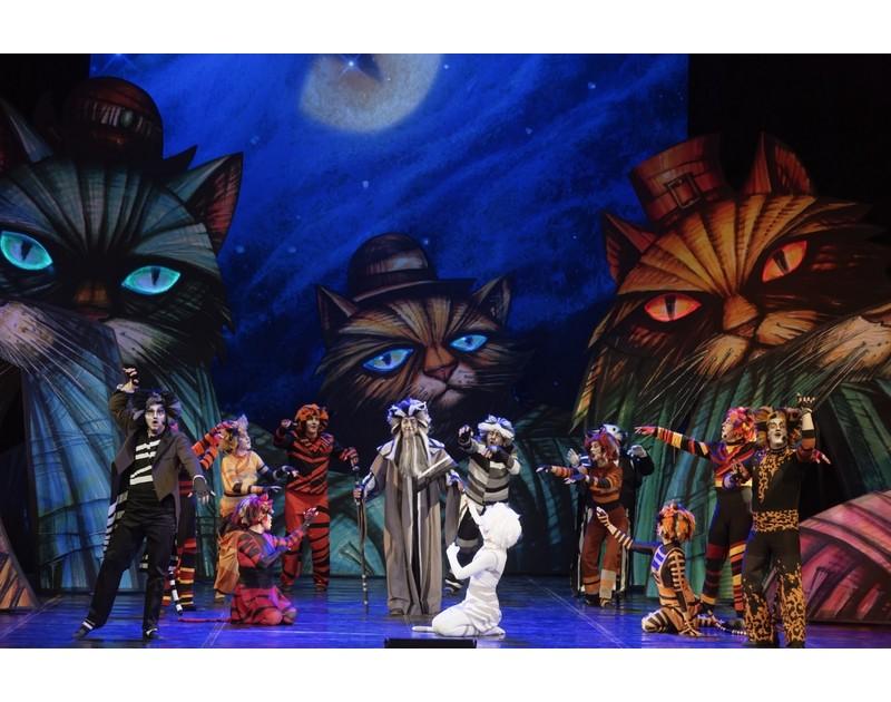 «Кошки» — мюзикл Э. Ллойда Уэббера